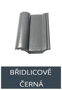 BRIDLICE